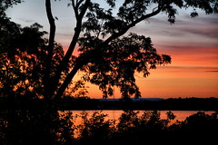 Sunset from Cottage deck. (CCphotoworks) Tags: scenics landscape outdoors nature dusk summer cottage lakes treesilhouttes trees silhouttes sun sunset ccphotoworks