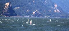Columbia River - 05 (VKesse) Tags: sailboard windsurfing