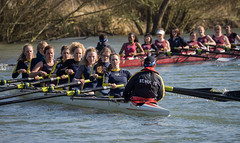 Torpids on the River Thames (Bruce Clarke) Tags: winter water river boat spring olympus oxford rowing blade riverthames isis oars torpids eights m43 bumping sthughs 75300mmii omdem1