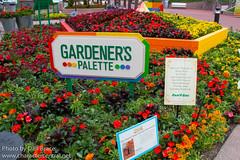 Gardener's Palette
