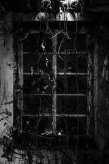 Gedney Railway Station Closed Since 1959 (BenChapmanphoto) Tags: light blackandwhite bw window monochrome mono march weeds fuji decay lincolnshire fujifilm derelict urbex gedney 2015 fujifilmxpro1 18mmf2
