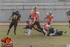 LNFA '14-15 Wildcats 26 Jabatos 14