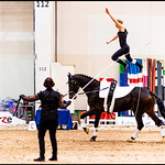 The Horse Jumper thumbnail
