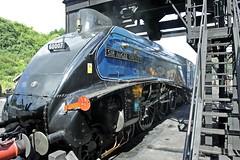 IMG_0221 steam train (M0JRA) Tags: transport trains steam railways
