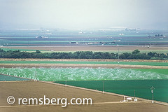 SALINAS, CALIFORNIA - Salinas Valley fields (Remsberg Photos) Tags: california usa green landscape pattern farm farming salinas rows fields agriculture horticulture salinasvalley