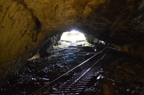 Bottom of the Cave, Looking Up