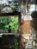 Istana Woodneuk: Patchwork (MrChangCJ) Tags: wood portrait urban house abandoned singapore dramatic jungle lonely exploration istana urbex tyersall neuk woodneuk
