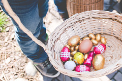 The hen took part in Easter egg hunt... (A. Joly) Tags: canon easter egg sigma f18 easteregghunt 1835mm eos70d