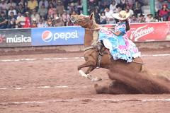 Picada (Jos Lira) Tags: caballo amazona texcoco