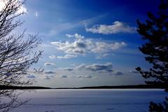 Spring lake (sakarip) Tags: trees lake snow ice pine clouds finland alder kainuu hyrynsalmi seitenjrvi sakarip