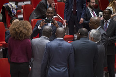 Secuirty Council Renews Cte dIvoire Mission for Final Mandate, Lifts Sanctions (United Nations Photo) Tags: newyork unitednations
