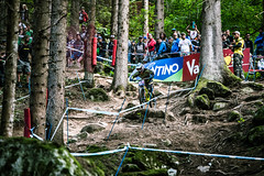 Tifo (Andrea Securo) Tags: world terrain mountain cup sports bike danger trek all extreme fast bikes down downhill val dh mtb di sole jumps faster shimano