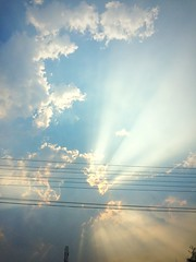 Silver lining. (parik.v9906) Tags: india nature scenic 365 ooty iphone