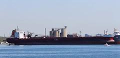Canada Steamship Lines - Spruceglen (jmaxtours) Tags: toronto harbour ships csl innerharbour torontoharbour canadasteamshiplines spruceglen builtin1983 cslspruceglen
