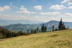 Widok z Klimczoka. W stronę Skrzycznego (czargor) Tags: mountains landscape hill mountainside beskidy beskidslaski klimczok