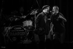 Southside Johnny Zeche Bochum 2016  _MG_1360 (mattenschuettlerphoto) Tags: newjersey concert live asbury concertphotography 6d jukes zechebochum southsidejohnny canon6d