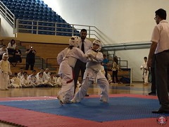 stefanou_15_5_2016_knockdown_218