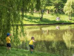 First taste of summer (A_Peach) Tags: park summer berlin children pond sommer olympus olympusf1845mm panasoniclumixgx8