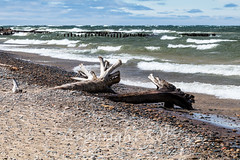 Michigan_North-0743.jpg (CitizenOfSeoul) Tags: usa beach sand michigan may greatlakes shore northamerica upperpeninsula lakesuperior whitefishpoint 2016