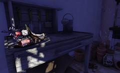 """... when words fail."" (LoneSolitarian) Tags: life flowers light shadow house flower building art home garden dark photography design photo 3d thankyou gardening furniture decoration gimp indoor sl secondlife virtual stuff second bouquet residence decor habitat sim firestorm windlight frisland"