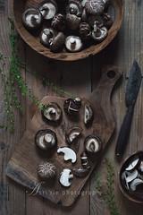 shitake mushroom (asri.) Tags: topview 50mmf14 foodphotography 2016 foodstyling darkbackdrop