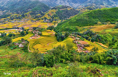 Lao Chai village (Black Baron93) Tags: travel canon tokina vietnam highland ricefield northeast moutains sapa 2015 landscapephotography vitnam northeastvietnam vietnamlandscape terracedricefield tokina1116 canon600d canonkissx5