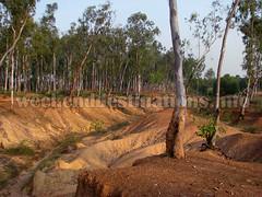 Khoai area Shantiniketan (Weekend Destinations) Tags: khoai shantiniketan sonajhuri santiniketan bolpur