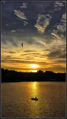 Acabando de faenar (Fernando Fornis Gracia) Tags: espaa galicia galiza pontevedra bueu morrazo pennsuladelmorrazo paisaje paisajeurbano puestadesol sunsert nubes cielo mar barca contraluz landscape