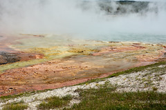 DSD_1472 (pezlud) Tags: yellowstone nationalpark landscape geyserbasin grandprismaticspring midwaygeyserbasin geyser park