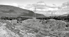 Touwsrivier Western Cape South Africa 30th May 1982 (loose_grip_99) Tags: africa railroad train river southafrica blackwhite 1982 mod noiretblanc shed may engine rail railway steam depot cape disused locomotive sas scrap province sar withdrawn karoo touws gassteam