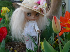 Blythe A Day April 1-Spring is in the Air
