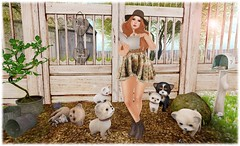 I Want A Dog ~ A Sneak Peek of EverGlow For Pose Fair (KiSMeT FaiTH) Tags: truth secondlife friday zenith ionic dustbunny sarisari everglow scarletcreative posefair collabor88 ariskea thechapterfour theseasonsstory