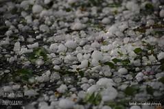 Ice on the ground (Saumil U. Shah) Tags: india storm ice rain weather hail gujarat ahmedabad saumil saumilshah therealsaumil