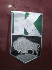 1948 Kaiser (Hugo90-) Tags: classic 1948 sedan forsale antique skagit kaiser