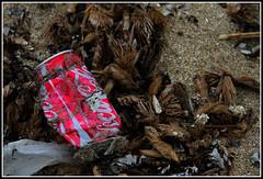 Sulla spiaggia (Maulamb) Tags: cocacola spiaggia lattina