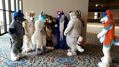 Dream Machine Photoshoot FWA 2015 - Shots by Lykanos (29) (Lykanos) Tags: furry photoshoot dreammachine fwa fwa2015 dmcostumes