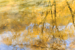Autumn Reflections (kelstar*) Tags: autumn newzealand fall water reflections river reflecting reflected southisland otago reflects canon6d