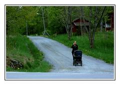 Rural Street (Anders Hjertn) Tags: sweden vrmland grums borgvik