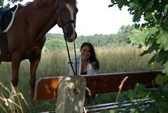 horse and portrait (horschte68) Tags: pentax k10d horse nature pferd greentree meadow lauf bavaria bayern franken franconia germany deutschland portrait summer sommer 2015 july juli face