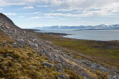 343 Day 3 Svalbard (brads-photography) Tags: seascape landscape scenery rocks scenic svalbard arctic spitsbergen birdcliffs ingeborgfjellet viewfromingeborgfjellet