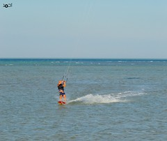 kite surfing 2 (Doctor Ahmed Badr) Tags: sea sports redsea egypt