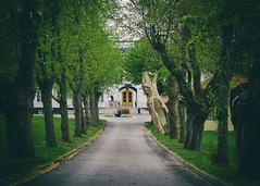 The parkway up to the former summer residence [Explored 2016-05-15] (kaffealskare) Tags: road alley parkway avenue vag vg jrflla all bolinder bolinderstrand bolinderverken fotosondag fotosndag fs160515 kallhllsgrd