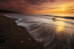 Ammonites (Tony N.) Tags: sunset sea sun mer france soleil normandie ammonites coucherdesoleil boues d810 benervillesurmer nikkor1635f4 ammonitesbeach