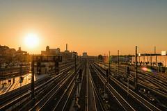 berlin 6am color (Zesk MF) Tags: street city sun berlin station architecture train reisen nikon line ring dust bahn sonnenaufgang morgens schienen zesk