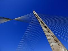A ponte dos tirantes (8) (juantiagues) Tags: azul puente cielo pontevedra tirantes juanmejuto juantiagues