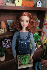 2. Lettuce Harvest (Foxy Belle) Tags: doll barbie diorama greenhouse garden plant made move rebody redhead terriffic teal curly hair dollhouse miniature shed