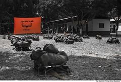 Curso de Adaptao Bsica ao Ambiente de Selva (CABAS) (Fora Area Brasileira - Pgina Oficial) Tags: fab force air selva militar brazilian alexandre manaus curso militares amaznia treinamento cabas sobrevivncia adaptao capacitao manfrim
