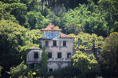 Porto (hans pohl) Tags: trees houses windows abandoned portugal nature architecture buildings landscapes maisons roofs arbres porto paysages fentres toits abandonn btiments