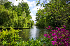 St James Park London (cuppyuppycake) Tags: park uk travel summer england london nature st james outdoor