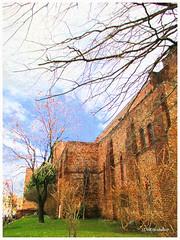 St. Stephen's painting   Washington, DC (Stephenie DeKouadio) Tags: church canon painting photography washingtondc dc washington image branches episcopal imagery columbiaheights saintstephensdc